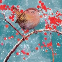 Christmas cards from the RSPB