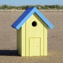 This is one of the three beach hut nest boxes