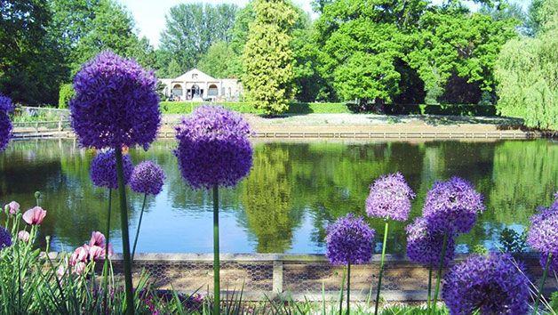 Enjoy strolling round the gardens