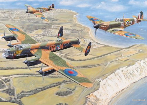 The RSPCA has several nostalgia jigsaws, such as this one - the Battle of Britain
