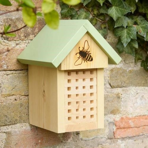This is a Solitary bee home