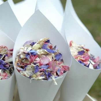 Real Flower Petal Confetti Box - Mixed
