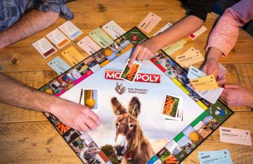 Donkey Sanctuary's Monopoly Game