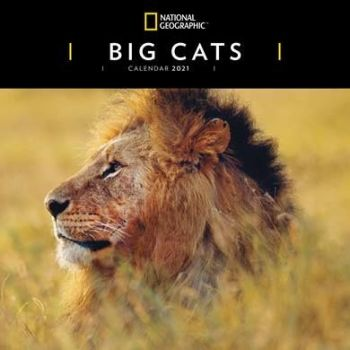 Big Cats Calendars 2021 from the CalendarClub.co.uk