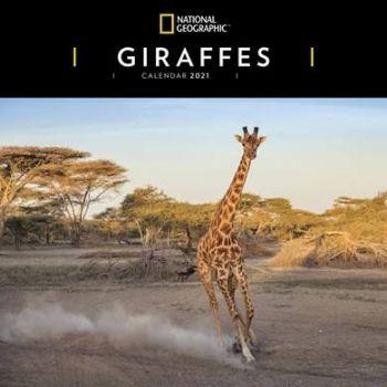 The National Geographic Giraffes Calendar 2021