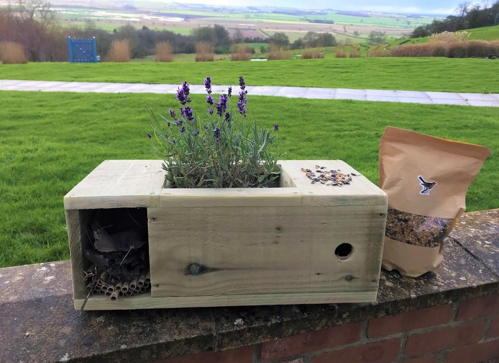 This is the Wild Garden Box from Lavender World