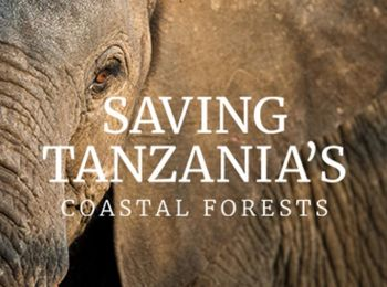 Donate towards the World Land Trust's appeal to save Tanzania's coastal forests