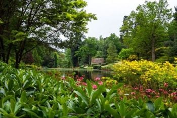 Wine Tasting and Garden Entry for Two at Leonardslee Lakes and Gardens
