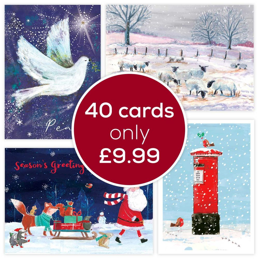 Get  the Fab Forty RSPB Charity Christmas card pack for £9.99!