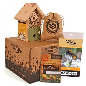 For the Love of Bees Gift Pack from Natural Collection