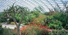 onal Botanic Garden of Wales Visit for Two