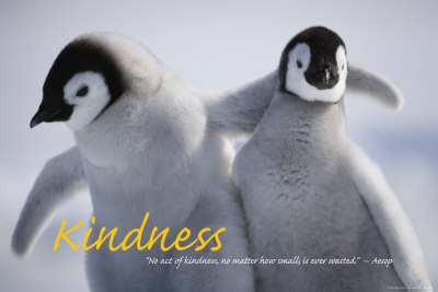 """""""Kindness"""" - a lovely gift"""