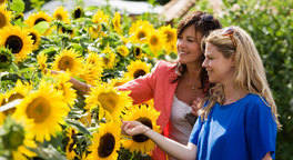 Treat them to an RHS Flower Show