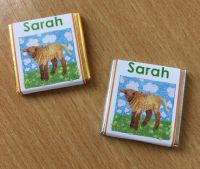 BROWN LAMB mini square chocolate favour
