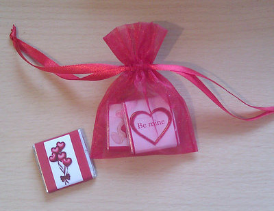 MINI CHOC ORGANZA GIFT BAG