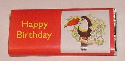 TOUCAN - large chocolate bar 40g