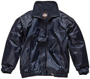 Dickies Lewis Jacket JW23500
