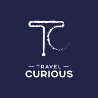 travel curious logo 2