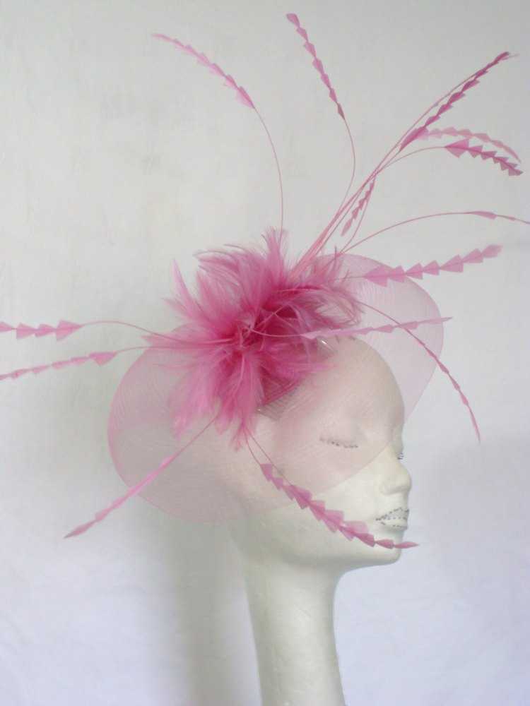 'Snoxell My Hat' Crin fascinator with long chevron coque feathers