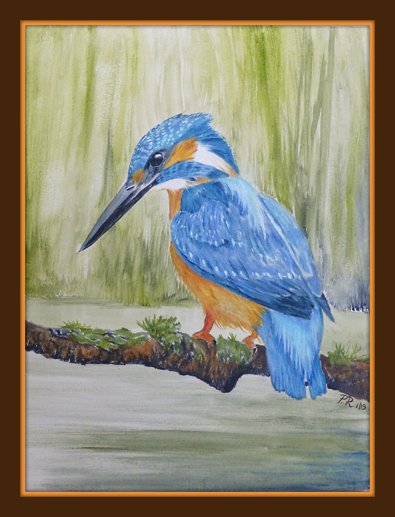 'Kingfisher' The brightest blue and orange bird seen fishing along riverbanks.