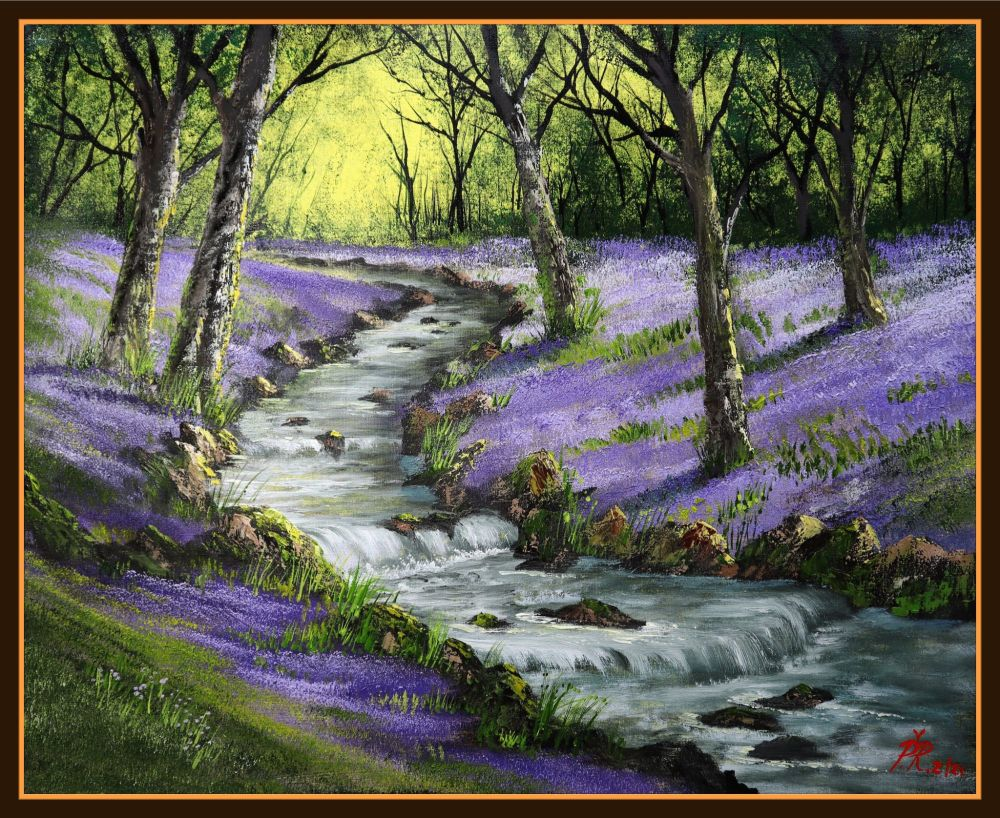 Bluebell Woods and Stream