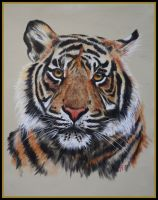 'Tiger'- Step by Step Wildlife Class on Live Stream or DVD