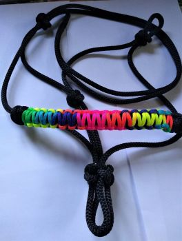 Halter with Rainbow Noseband