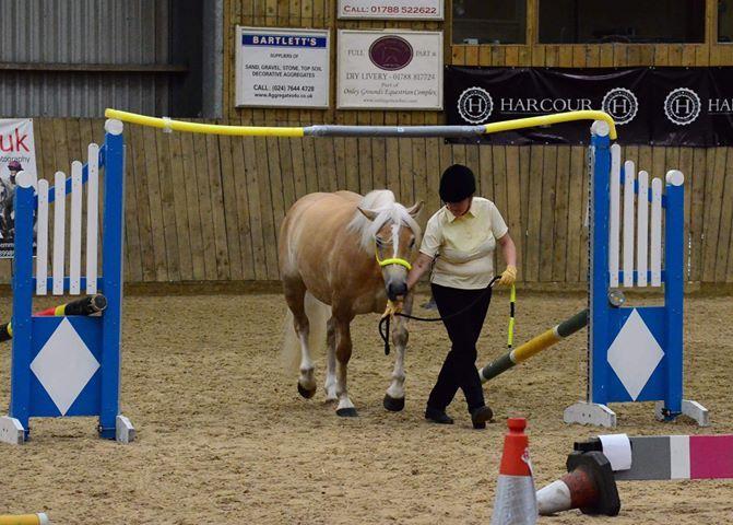 Amys pony 3