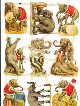 7428 - Circus Elephant Elephants