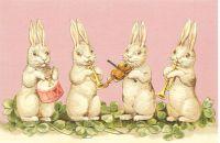 Easter Bunny Bunnys White Rabbit Post Card 3056