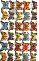 1761 Butterfly Butterflys