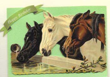 Horses Birthday Greeting Card