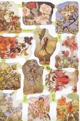 1889 - Cicely Mary Barker Flower Fairys Fairies
