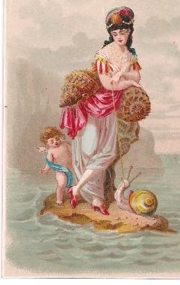 Victorian Printed Scrap