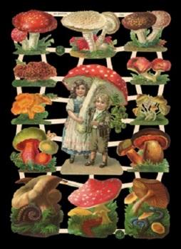 7355 - Toadstools Fairy's Mushrooms Magical