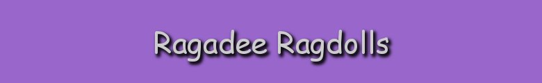 Ragadee-Ragdolls.co.uk, site logo.