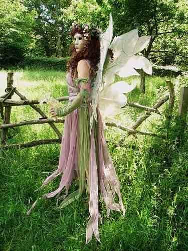 the woodland fairy