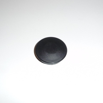 CAP, SWING ARM PIVOT BOLT - GSF1200, GSF600