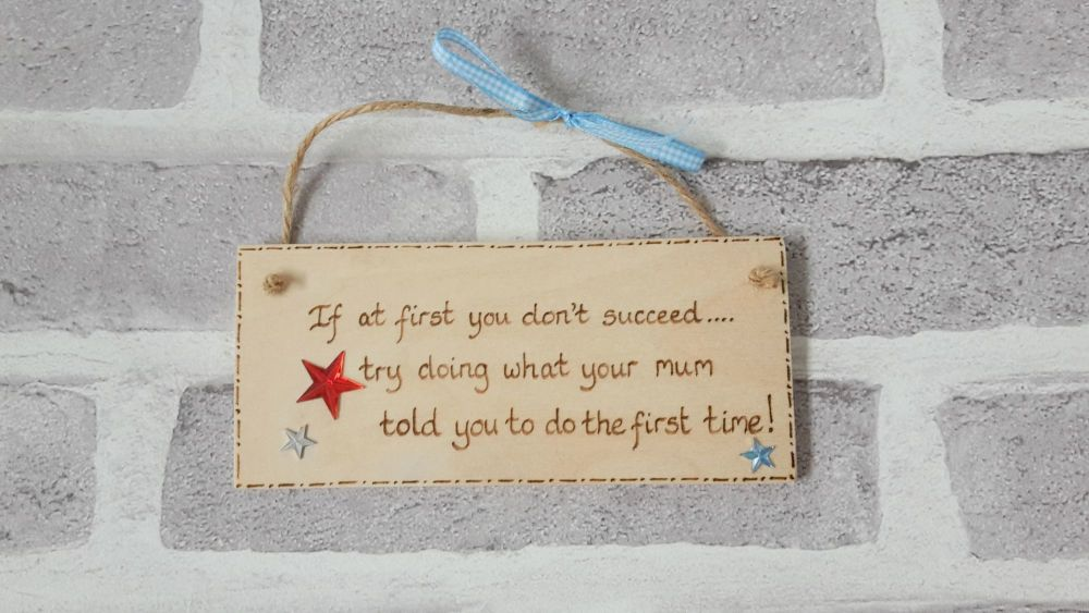 If at first you don't succeed plaque