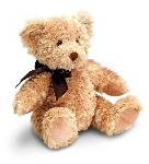 Personalised Teddy Bear Sherwood