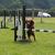 WS Jumping Fun Sara_Ripey_OutRound_01