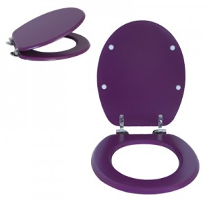 Moulded wood Toilet seat with Violet Colour finished with Chrome Hinge by M