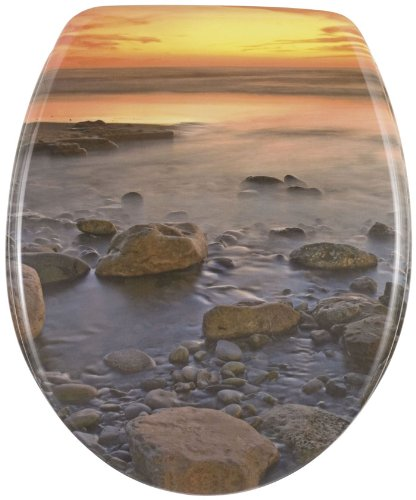 Wenko Thermoset Plastic Toilet Seat with Stone Shore design print and Chrom