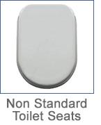 2016_non_standard_logo