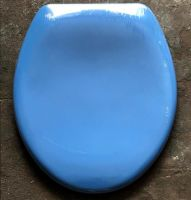 Blue ( Powder / Sky Blue) Slow Close Duroplast Toilet Seat with plastic Chrome Finish Hinge