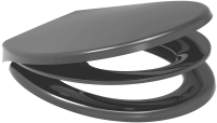 RTS Potty Training Toilet Seat  - Anthracite