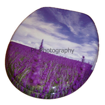 Lavender Fields Print Wood Toilet Seat
