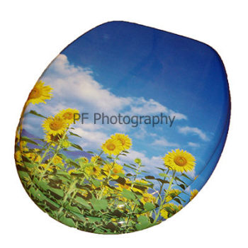 Sunflower Print Moulded Wood Toilet Seat