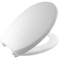 White Thermoplastic Toilet Seat by Bemis
