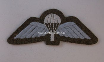 WW2 Para Wings (Shaped Backing)